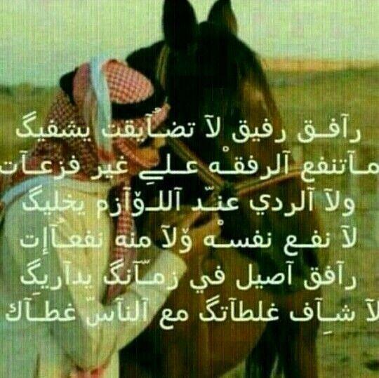 الرفيق My Love Sly Love