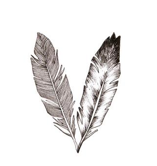 plume d 39 aigle tatouage recherche google dessin plume. Black Bedroom Furniture Sets. Home Design Ideas