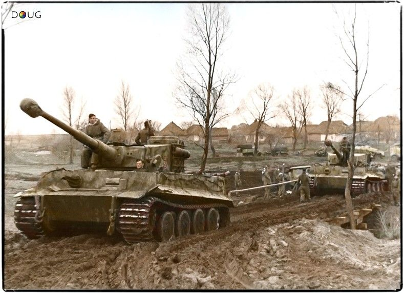 Beautiful Color Photo Of Several Tiger 1 Tanks On The March German