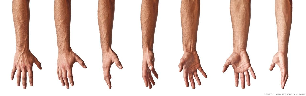 Male Hand Reference by Sebeuroc.deviantart.com on @deviantART ...