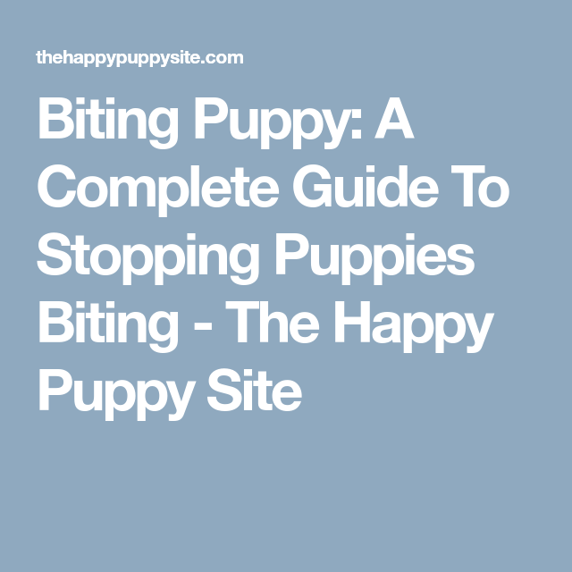 biting puppy a complete guide to stopping puppies biting - 640×640