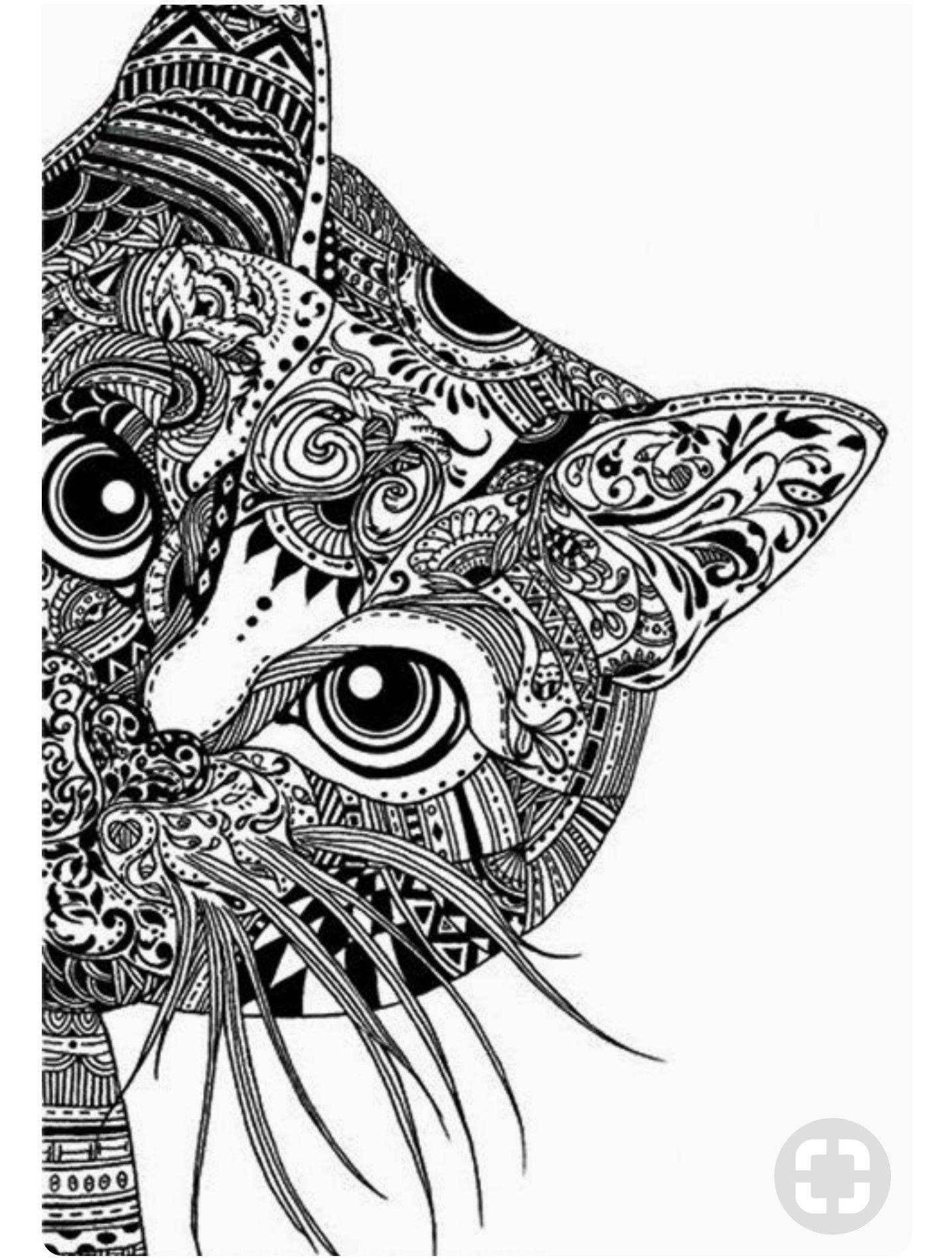 Pin de lucia nicolas en Gatito | Pinterest | Gato, Mandalas y Cosas ...