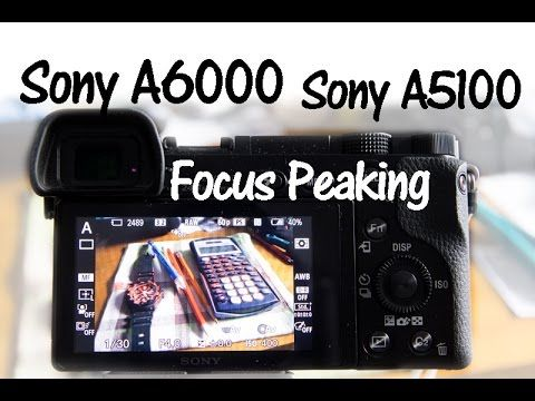 Sony A6000 and A6300 Focus Peaking - YouTube | Sony A6000 | Sony