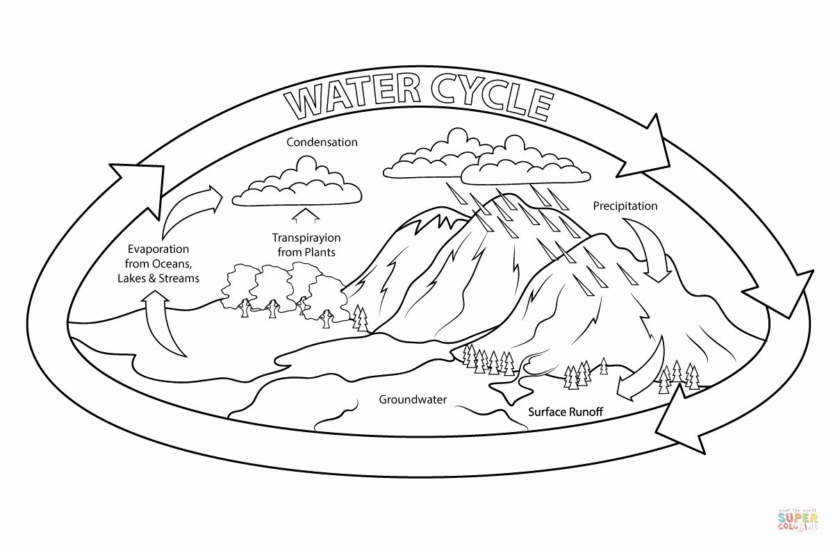 32 Water Cycle Coloring Page in 2020 Water cycle
