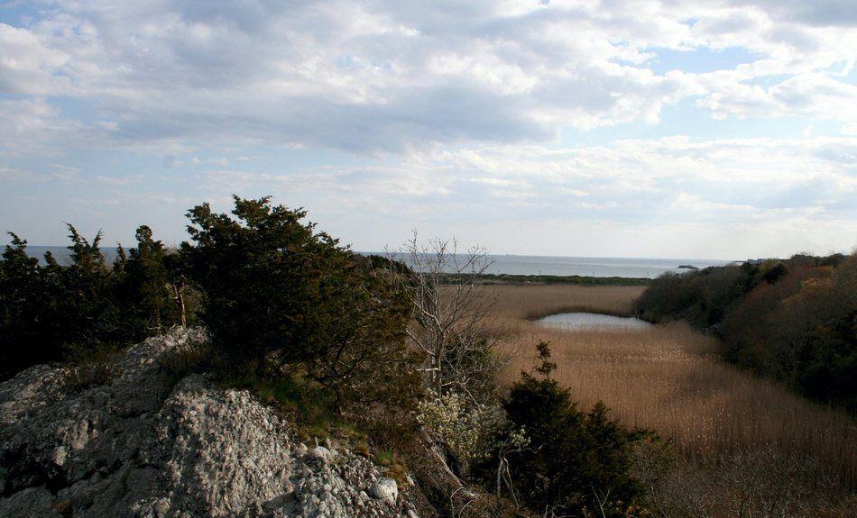 Norman Bird Sanctuary in Middletown, RI - Rhode Island Rambles ...