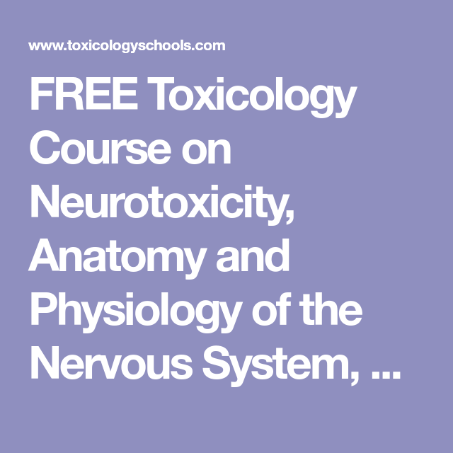 FREE Toxicology Course on Neurotoxicity, Anatomy and Physiology of ...