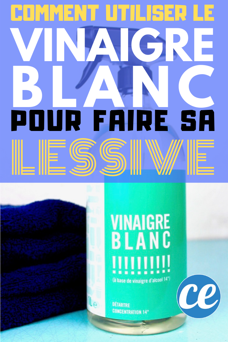 Nettoyer Le Lave Linge Au Bicarbonate Épinglé sur nétoiyage maison