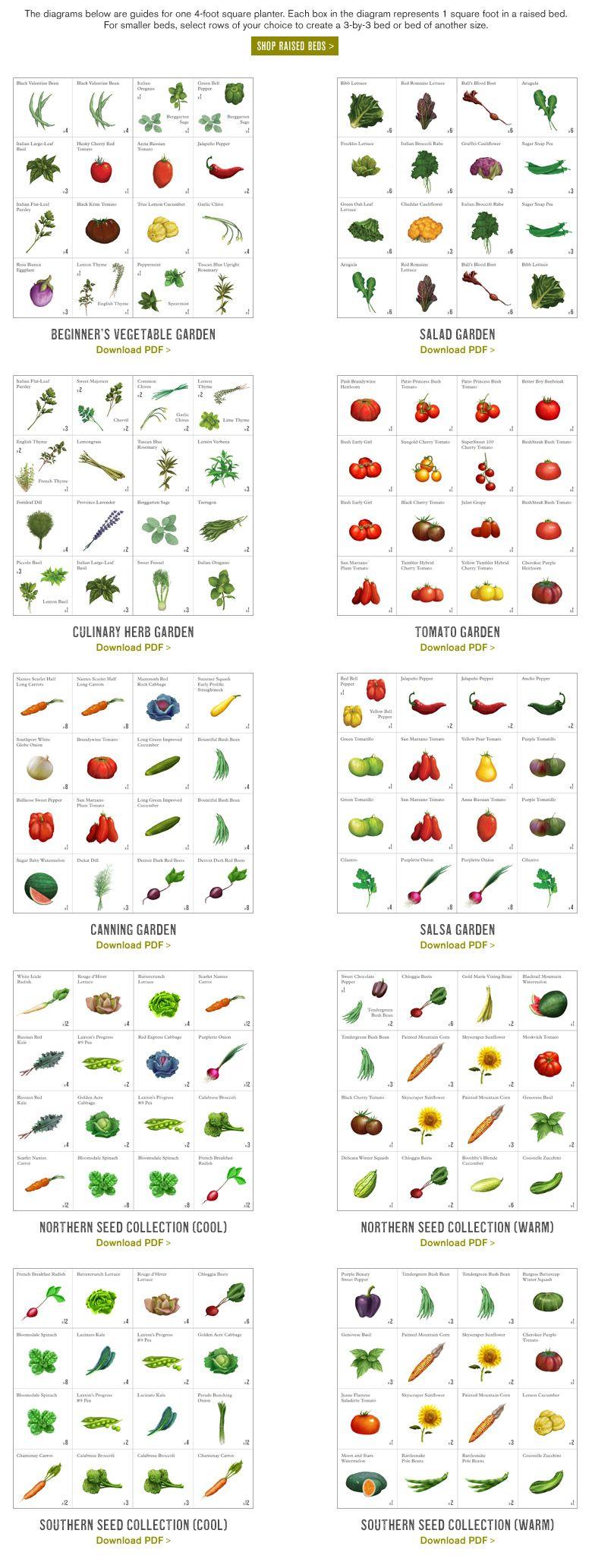 219d52b4cbf9ef91aa83f52d1d25ebbe - Square Foot Gardening Planting Chart Pdf