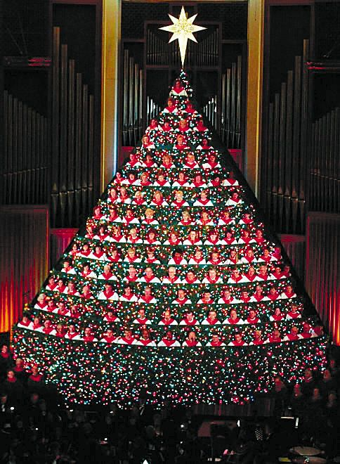 Living Christmas Tree.Living Christmas Tree Features Tales To Show True Meaning Of