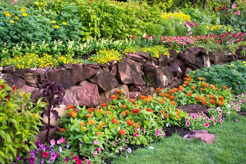 Full Bloom Nursery Clermont Ga Landscaping Ideas Front Yard Front Yard Landscaping Colorful Garden