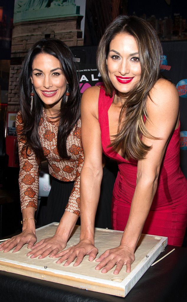 Nikki brie bella from the big picture today 39 s hot - Westling muebles ...