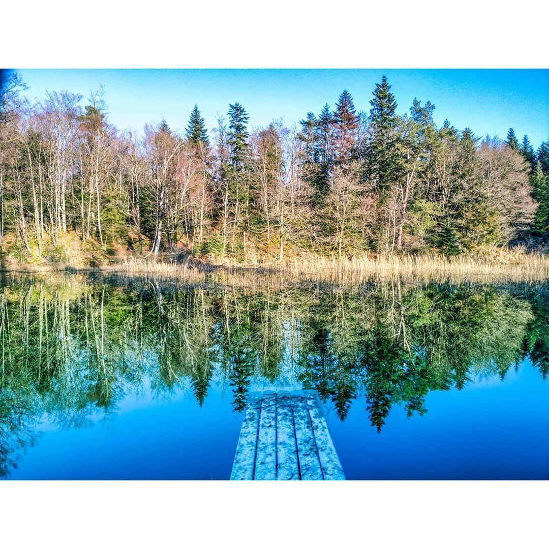 𝐺𝑜 𝑤𝑎𝑙𝑘 𝑜𝑛 𝑤𝑎𝑡𝑒𝑟.  #water #blue #sky #sun #nature #bridge #forest #pictures #photography #reflection #eau #lac #reflet #ciel #bleu #foret #arbre #libre #pont #soleil #photographie #capture #france #1000etangs #franchecomte #paysage #landscape