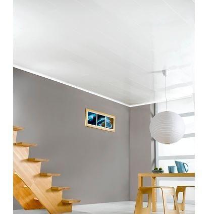Lambris Pvc Pour Plafond Idees