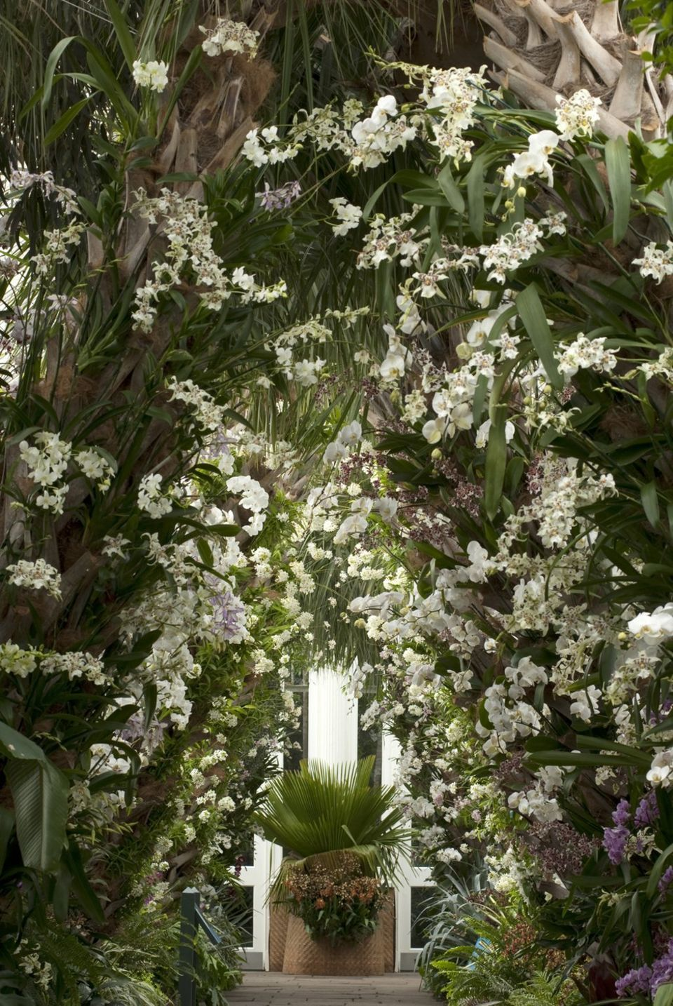 palm beach botanicals | NY Botanical Garden taps Sanchez to create ...