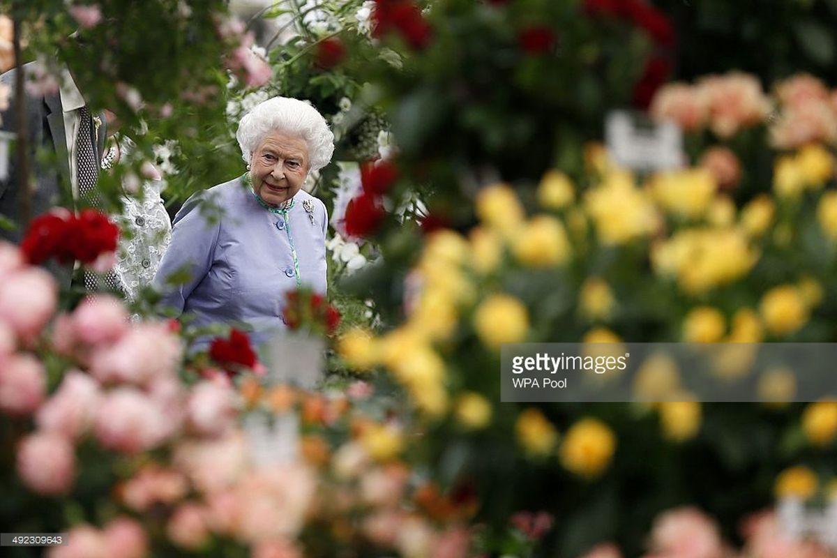 Chelsea Flower Show: i fiori invadono Londra