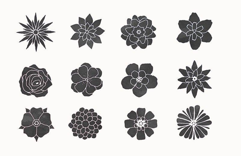 Medialoot - Hand Sketched Vector Flowers