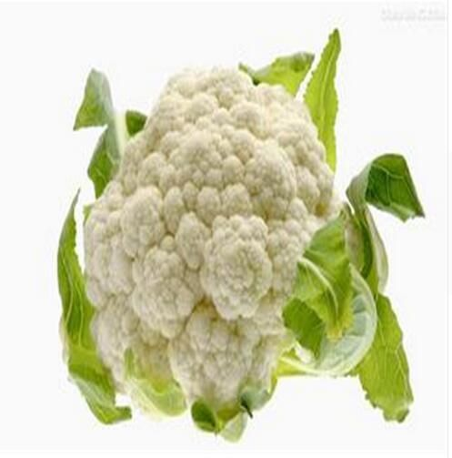 2016 new anticancer 100% natural Cauliflower Extract Powde 100g/lot for sale