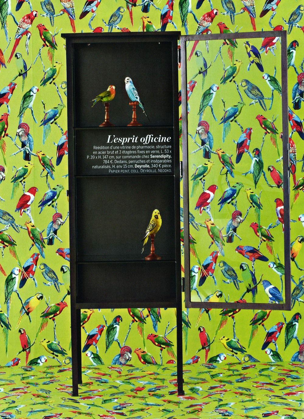 Papier Peint Avec Perroquet papier peint perroquets édité par deyrolle : https://www