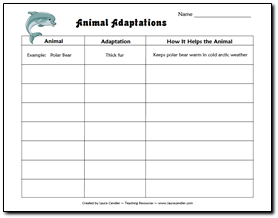 animal adaptations chart give the students the animals could use in older grades and have the. Black Bedroom Furniture Sets. Home Design Ideas