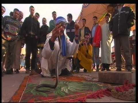 Marrakesch, Marokko: Für Jetset, Backpacker und Kreuzfahrttouristen | traveLink.