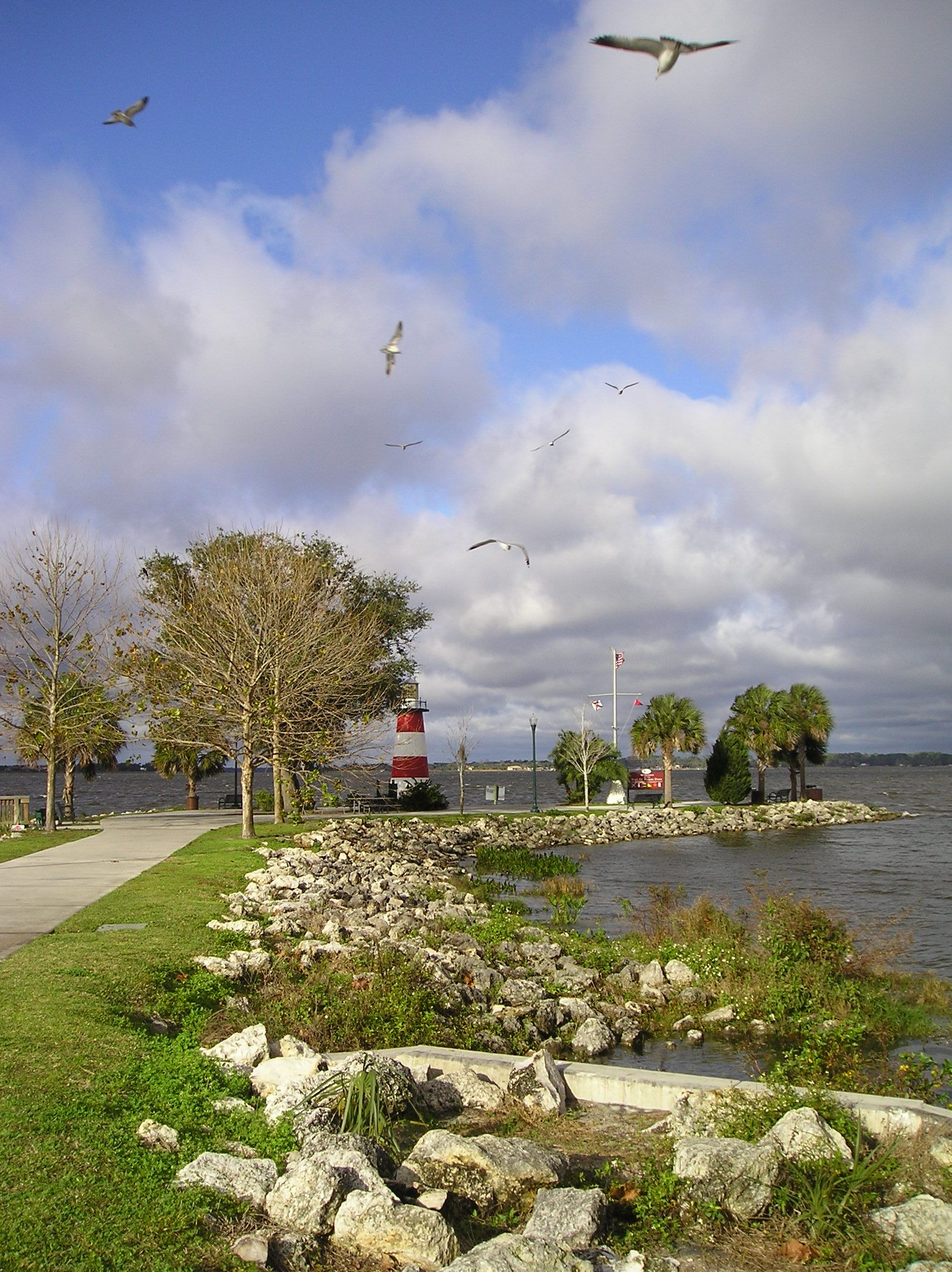 Mt. Dora lighthouse. Florida. Picture by Trish Bowers.