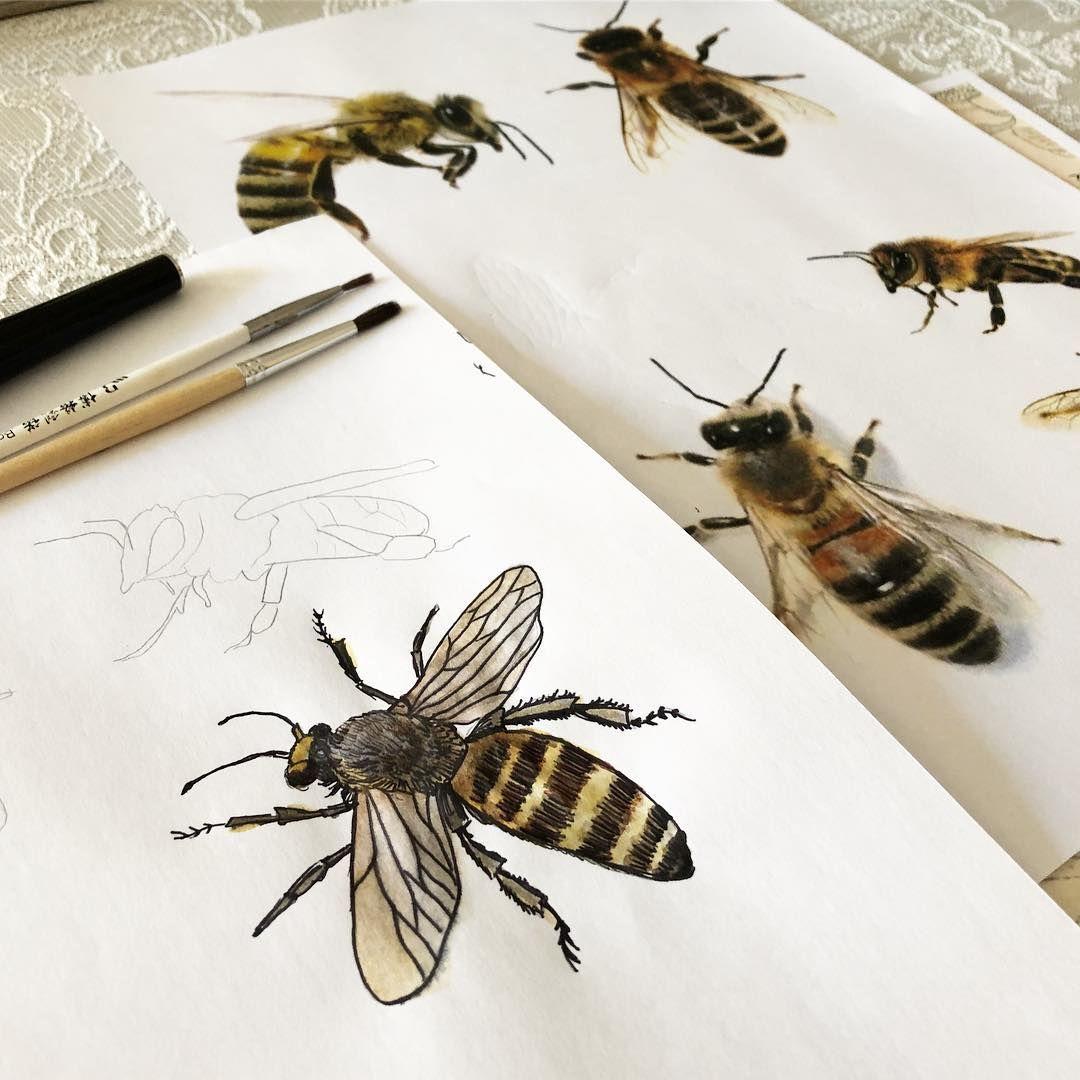 Monika Na Instagramie Projekt Pszczola Robie Etykiety Na Miod