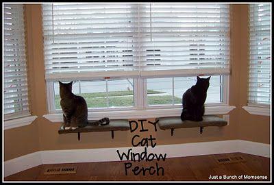Diy Cat Window Perch Cat Window