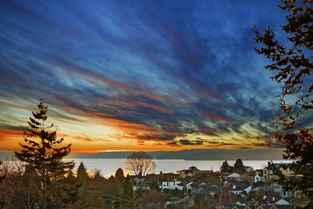 Seattle, WA sunset Garden inspiration, Landscape, Sunset