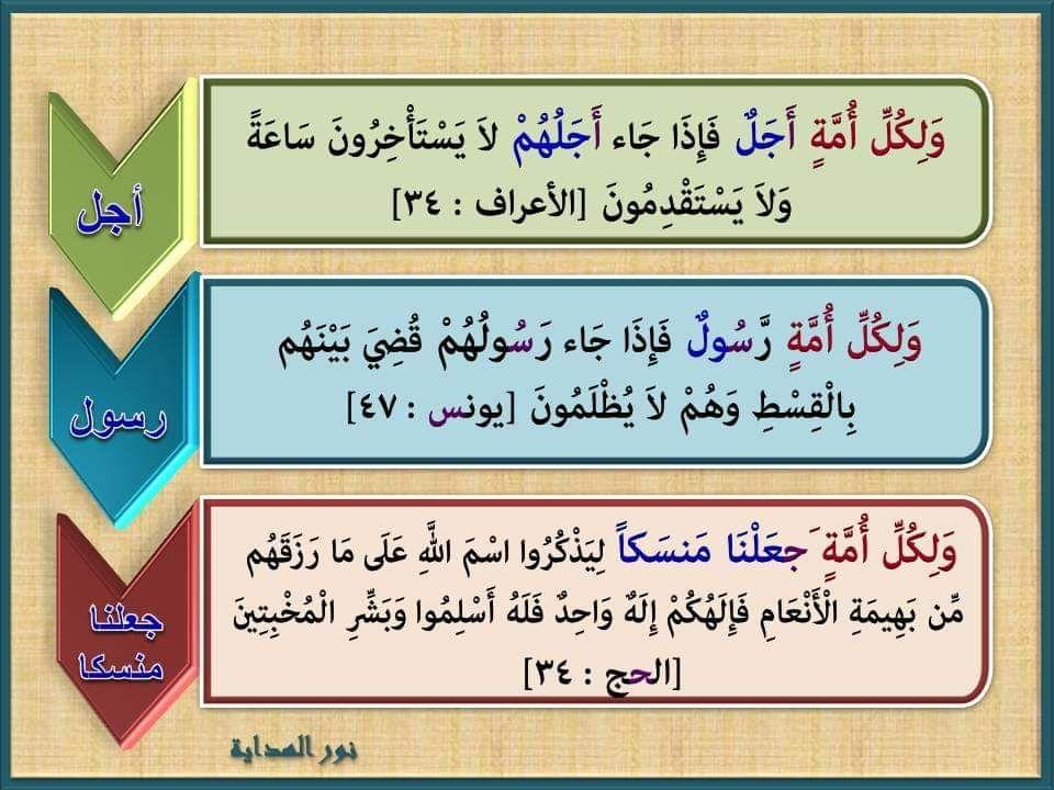لكل أمة ست مرات في القرآن ثلاث مرات بزيادة الواو ولكل أمة Food Bread Matzo