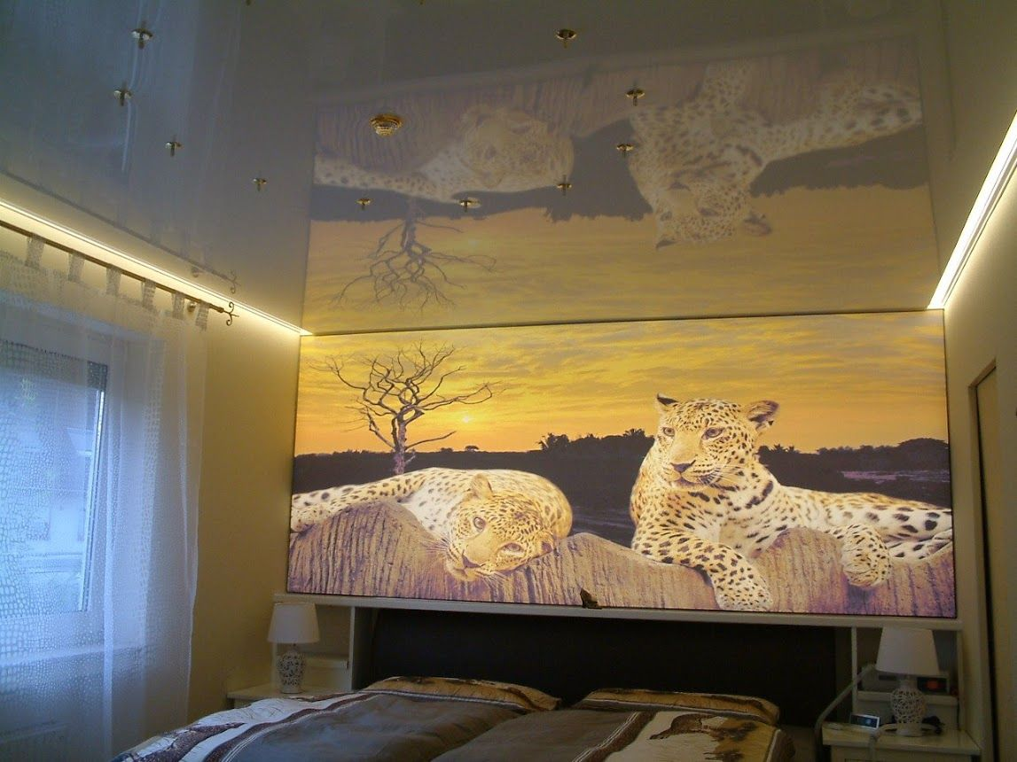 Schlafzimmer Mit Hinterleuchteter Bedruckter Spanndecke Decke Mit Einer Hochglanz Spanndecke Spanndecken Deckchen