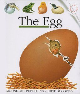 The Egg First Discovery Series Rene Mettler 9781851030828 Amazon Com Books Discovery Christmas Bulbs One
