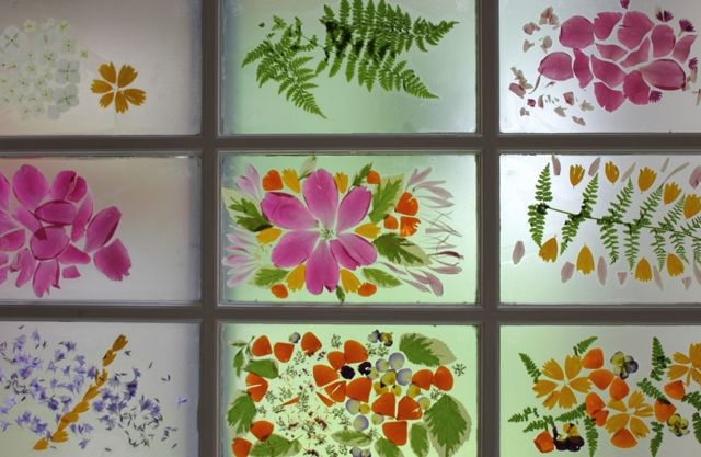 stick flower petals and leaves to contact paper - then stick the whole thing to your window