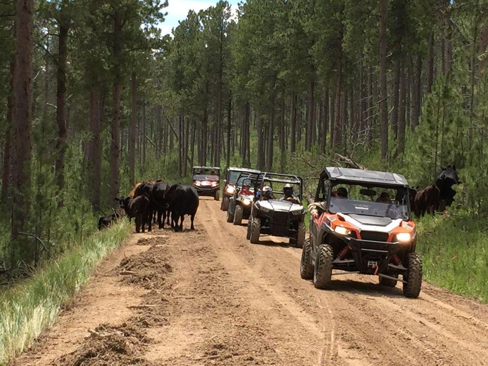 Best Atv Utv Trails In The Black Hills Of South Dakota Montana Road Trips Black Hills South Dakota Black Hills