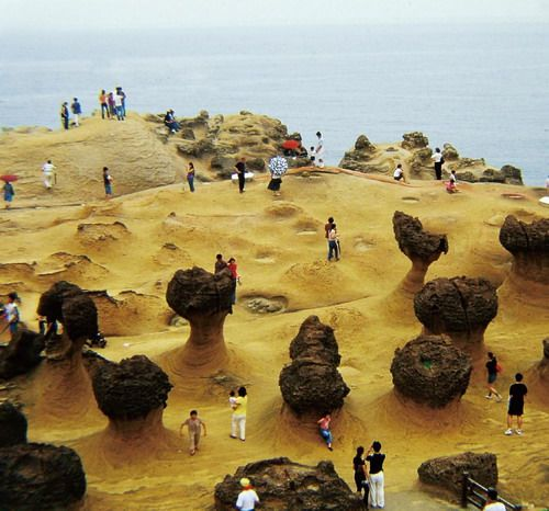 Vacation Ideas South East: 野柳 - Yehliu Geopark