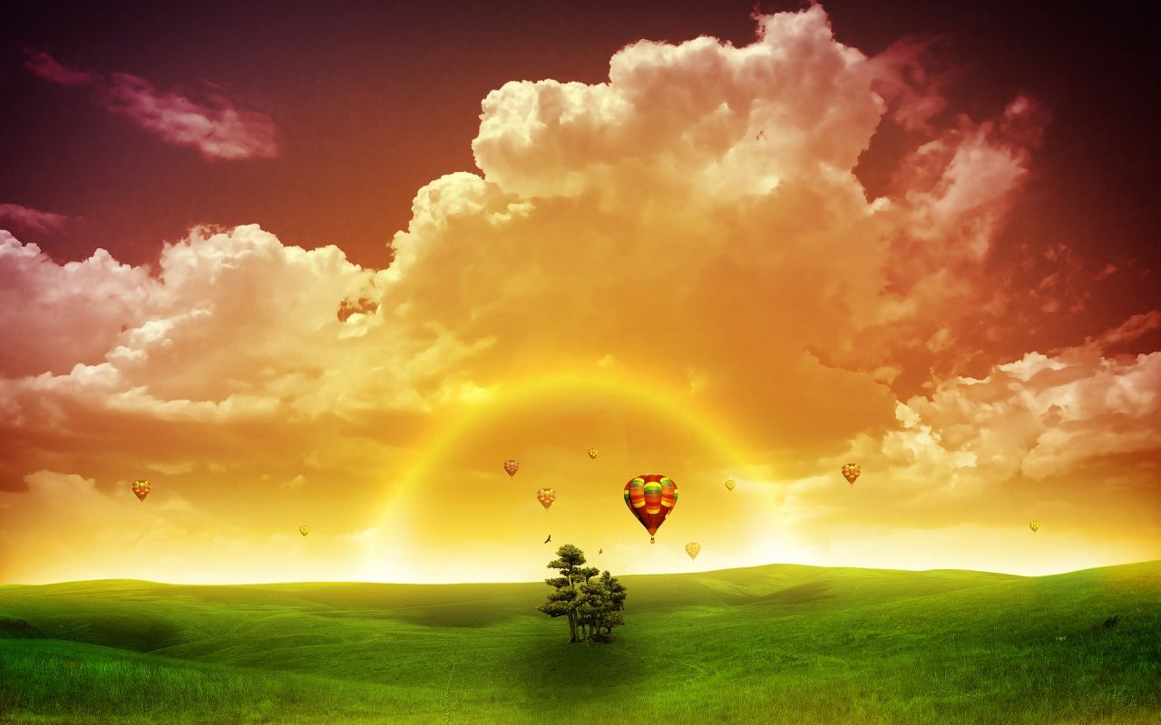 Flowers Grass Green Rays Red Spring Sunrise Yellow Wallpaper