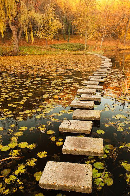 Autumn in stepping stone, Lipnik park, Bulgaria