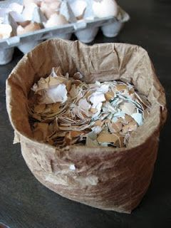 TIPS: using egg shells to help improve your garden #Garden #Compost #fertilizer #PestControl