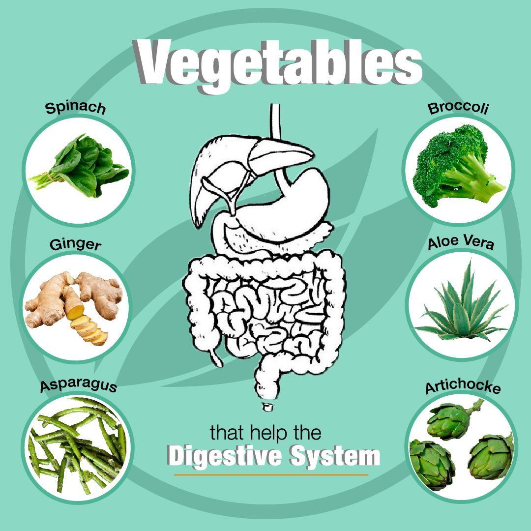 Vegetables that help the digestive system in 2020