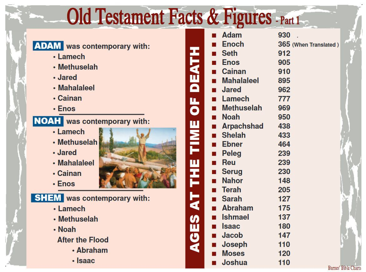 Old Testament Facts Amp Figures 1