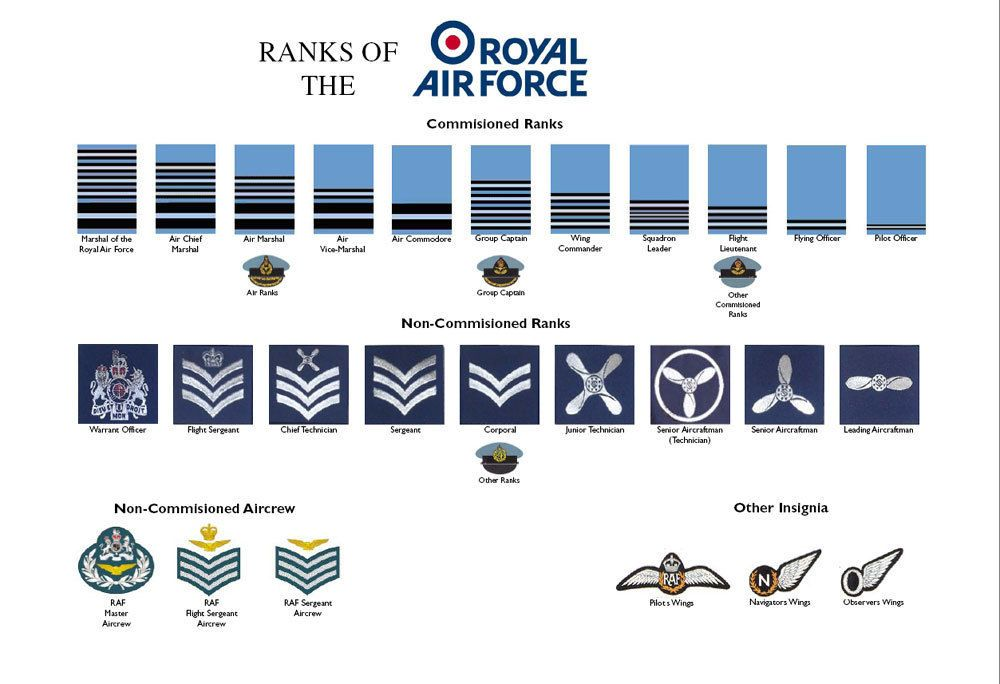 Large A3 Ranks Of The Royal Air Force Raf Poster Rank Structure New British In 2021 Royal Air Force Military Ranks Air Force Badge