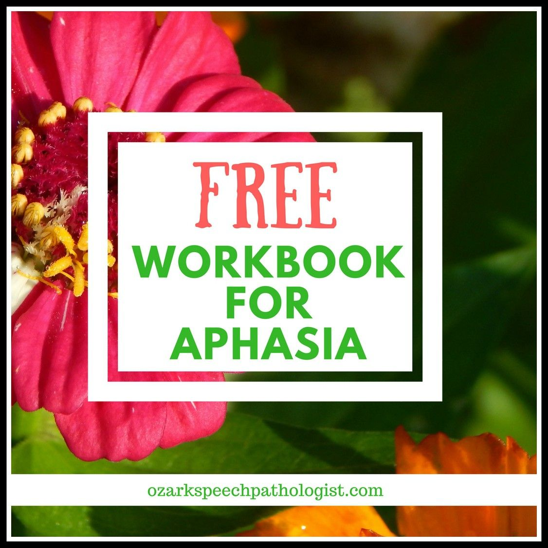 Free Workbook For Aphasia With Images