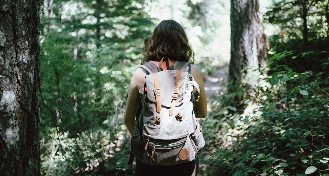Camminare nei boschi fa bene al cervello
