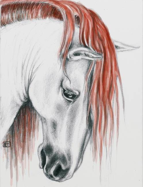 Andalusian horse red mane by Evey Studios