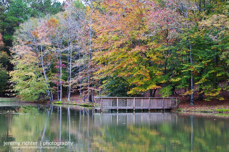 MultiFlavored Autumn Reflection, Shelby County Shelby