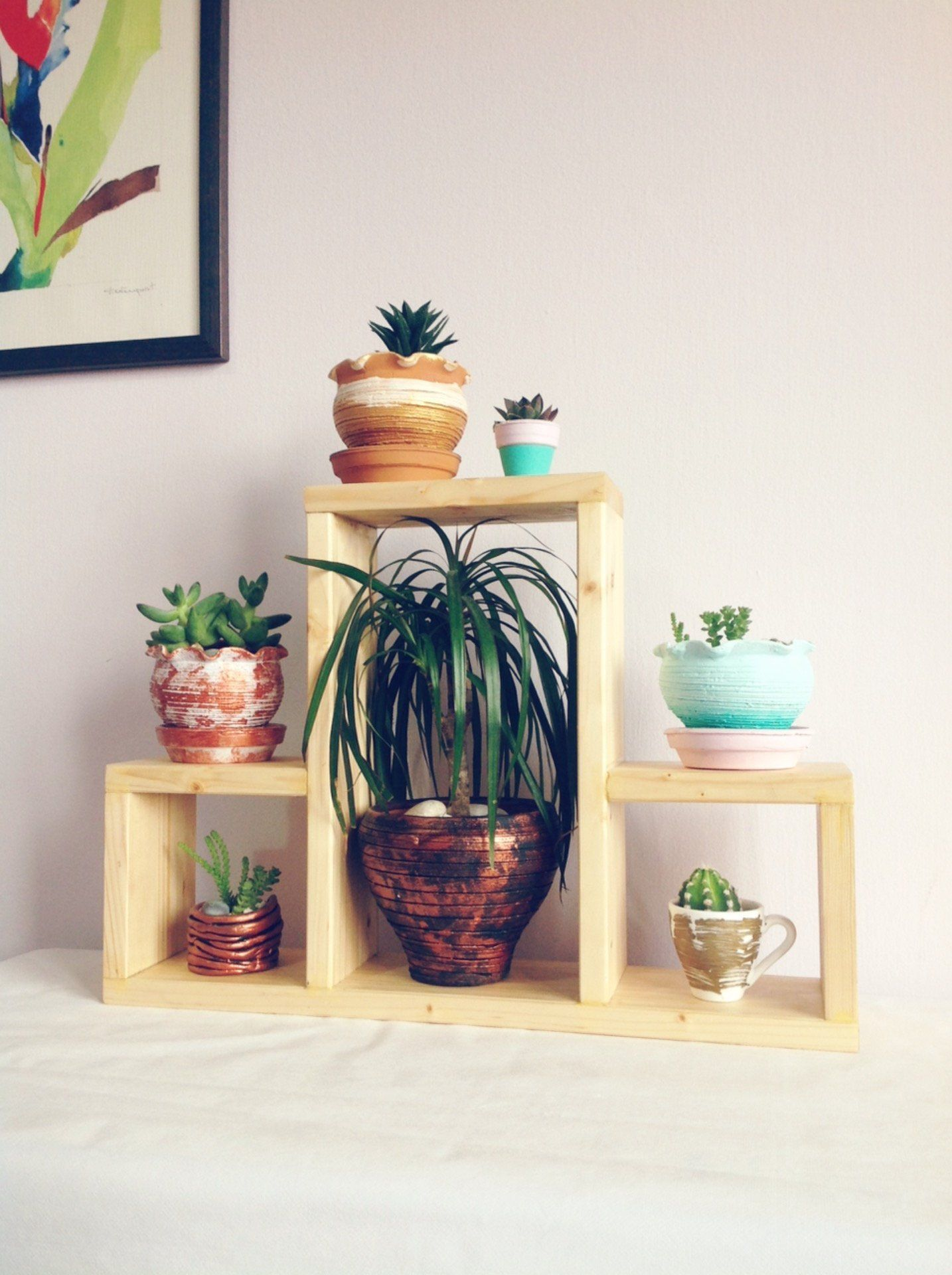Indoor plant stand | succulent cactus display rack ...