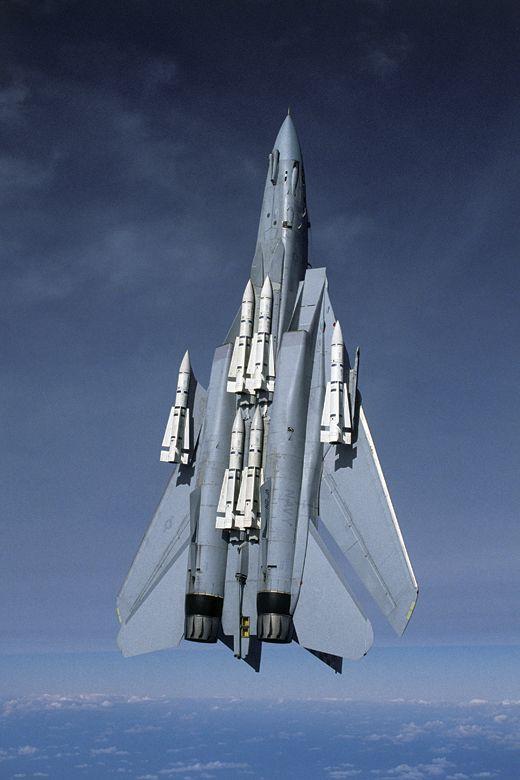 f 14 tomcat showing of its phoenix missiles us navy flugzeug luftfahrt e rc flugzeug. Black Bedroom Furniture Sets. Home Design Ideas