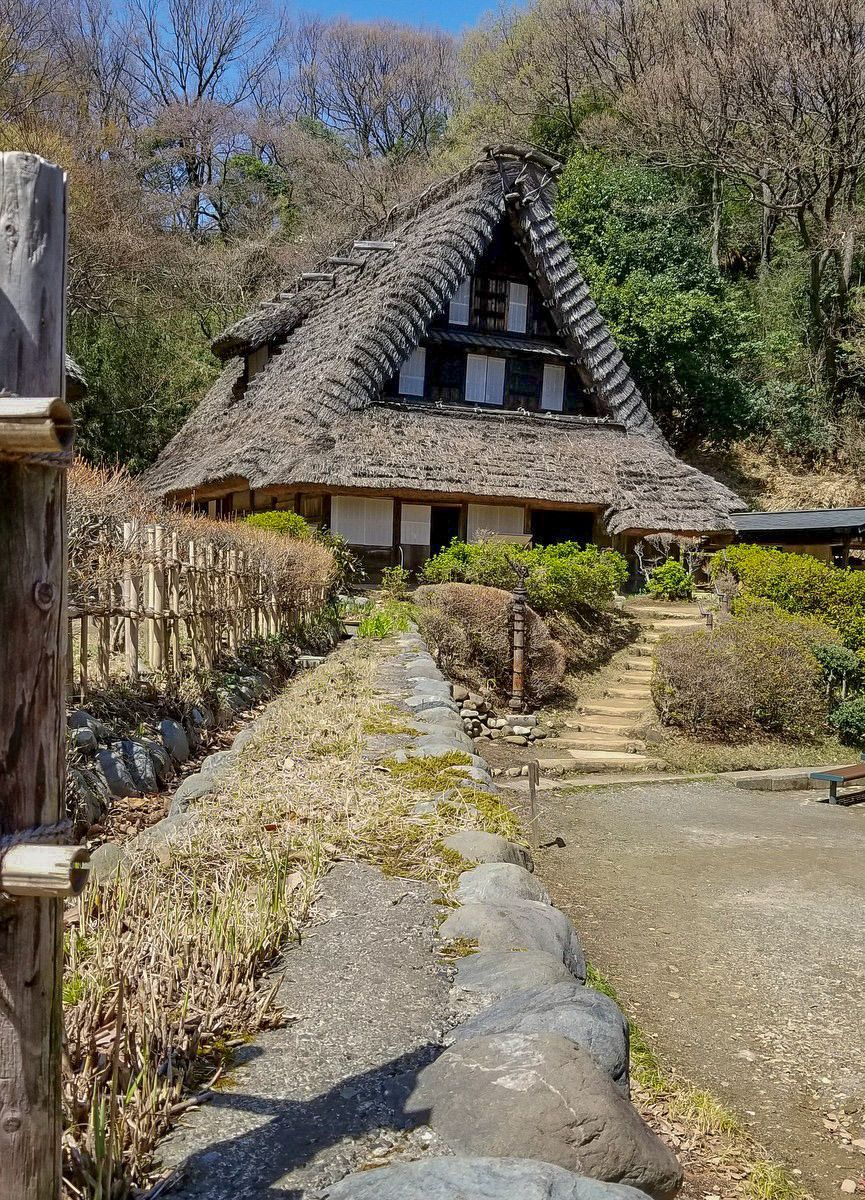 Steep Thatch Roof