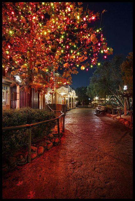 The Halloween Tree - Disneyland (Explore) Disney Pinterest