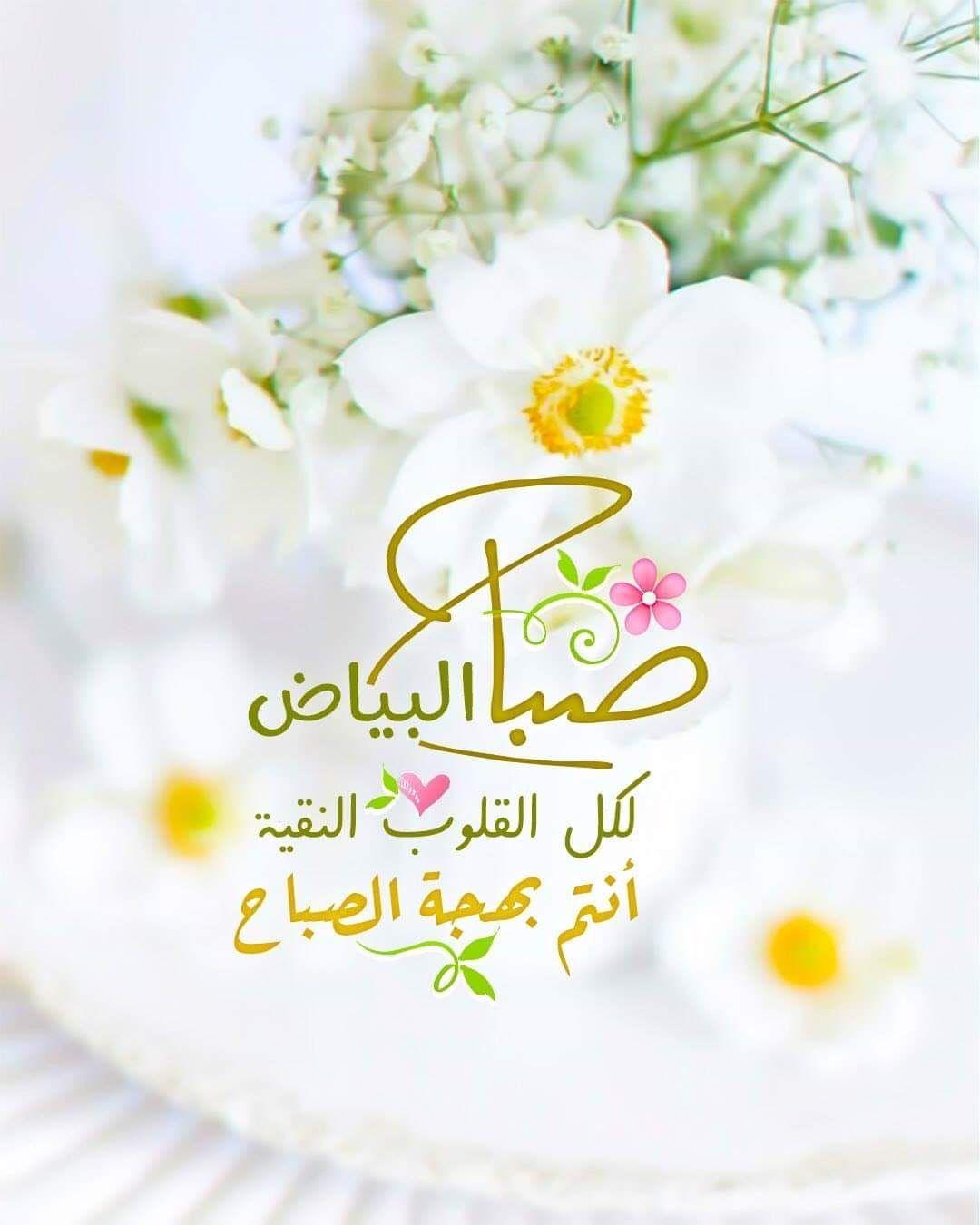 Pin By Amr El Shimy On صباح الخير Good Morning Good Morning Flowers Good Morning Roses Good Morning Photos