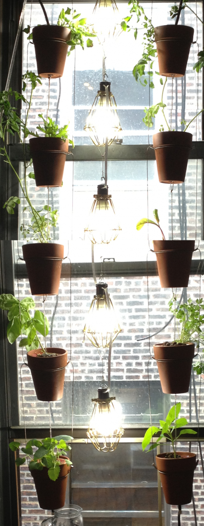 food safe windowfarm – june 7th and 24th update | our.windowfarms.org